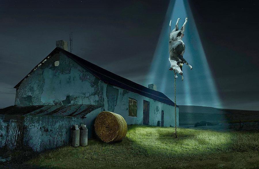ufo_abducting_a_cow_by_johannes01-d3gjr6g.jpeg