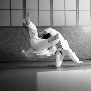 judo flip